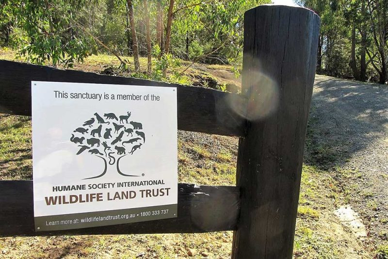 Wildlife Land Trust Sanctuary, Somewhere Unique, Hunter Valley